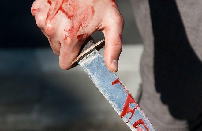 Туляк попытался зарезать супругу ивыбросил тело наулицу